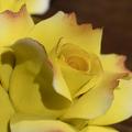 """Подсвечник """"Чайные розы"""""""